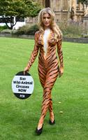 Joanna Krupa  bodypaint while protesting outside 1
