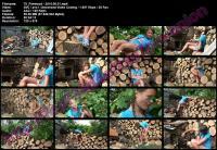 53971536_oe_75_firewood-2010-05-01.jpg