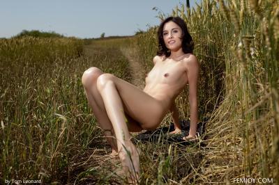 Sabrina G. - Field Of Gold
